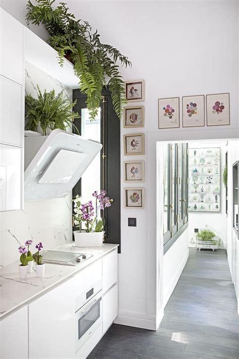 como decorar una cocina negra c 243 mo decorar una cocina blanca decoraci 243 n de cocinas