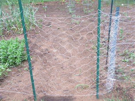 Garden With Wire Chicken Wire But No Chickens Aka Our Garden Plan