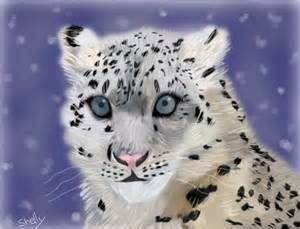 snow leopard 187 drawings 187 sketchport