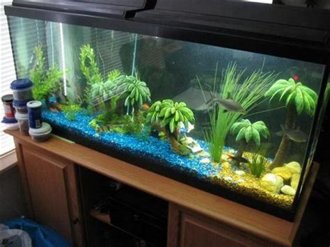 how to make fish tank decorations at home fish tank decoration ideas for living room interior