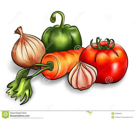 Raw Vegetables Stock Photo   Image: 24999530