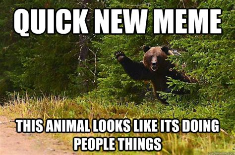 Quick Meme - quick new meme this animal looks like its doing people