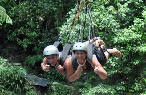 minjin jungle swing minjin swing