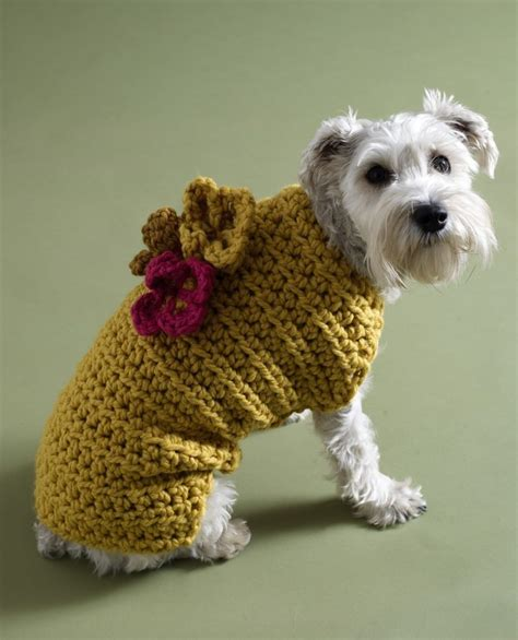 crochet pattern for large dog coat a guide to the best free crochet dog sweater patterns by