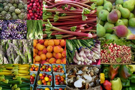 5 ways to preserve fruits or vegetables other than canning