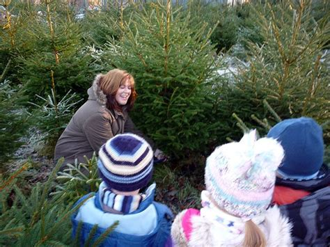 the best places to buy christmas trees in glasgow and