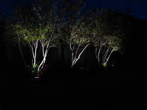 solar powered tree lights the best solar powered lights guide uk 2016