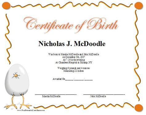 a fun printable birth certificate with a graphic of a baby