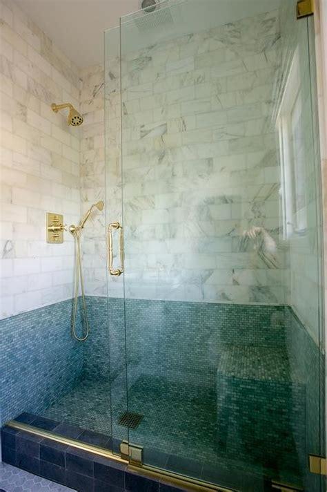 Seamless Glass Doors Seamless Glass Door With Holdups Lucite Shower Door Handle Transitional Bathroom
