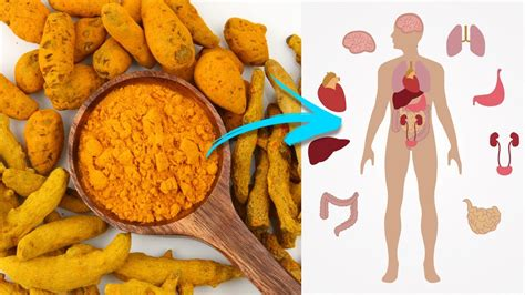 What Is Finder What Is Turmeric For 10 Turmeric Health Benefits