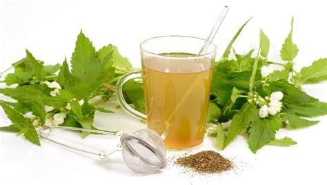 imagenes productos naturales dietas y salud 187 archivo del blog 187 191 funcionan los