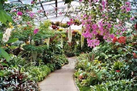 duthie park winter gardens winter gardens duthie park aberdeen 169 carol walker cc by