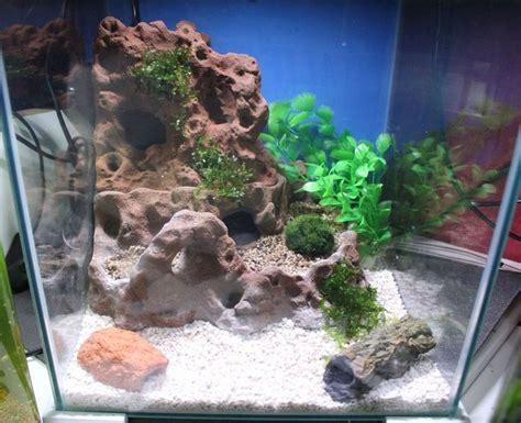 Aquarium Dekorieren Ideen by 467 Best Aquathier Kreative Deko Ideen Images On