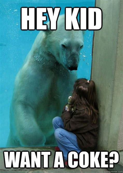 Coke Bear Meme - 35 most funniest bear meme pictures and photos