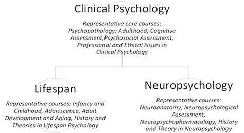 school psychology dissertation topics clinical psychology of