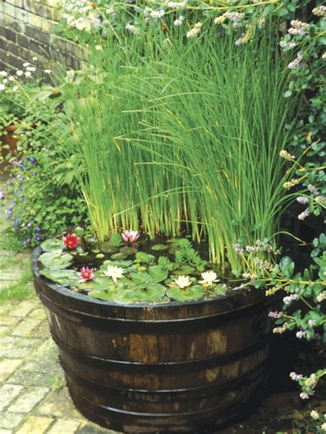 small water gardens in containers best 25 small water gardens ideas on
