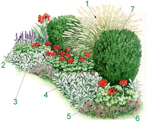 Pflegeleichter Garten Pflanzen by Pflegeleichter Garten Mit Pflanzen Die Sonne Bevorzugen