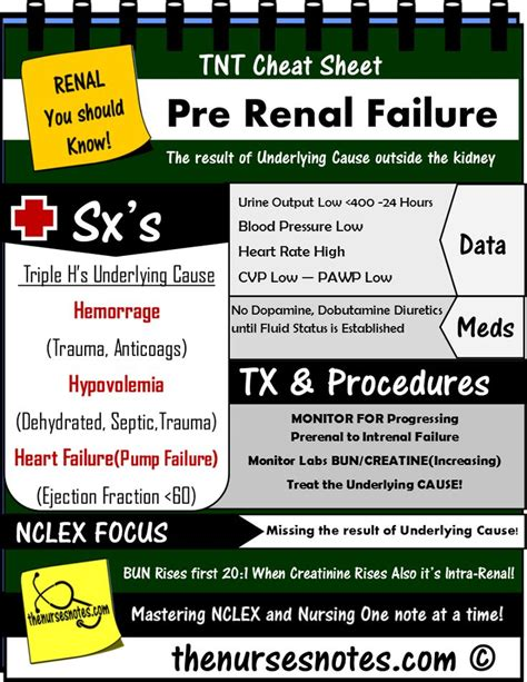 7 9 panel creatinine 17 best images about knowledge on bun