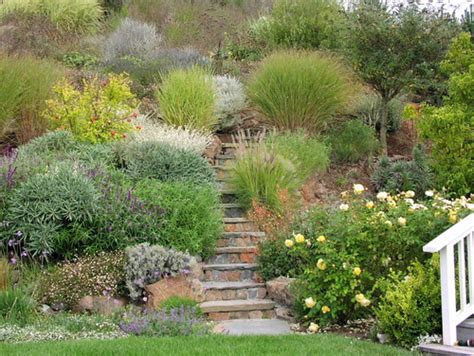 hill landscaping ideas landscaping ideas for hillside backyard slope solutions
