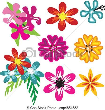 disegni fiori hawaiani ilustraciones de vectores de vector flores colorido