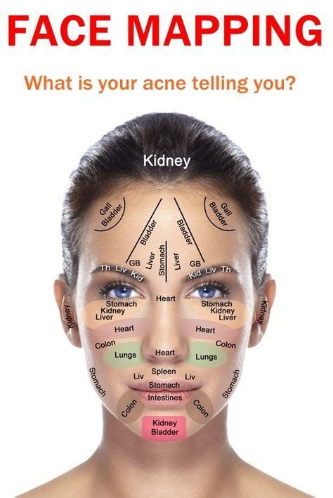 face mapping   skin  reflexology