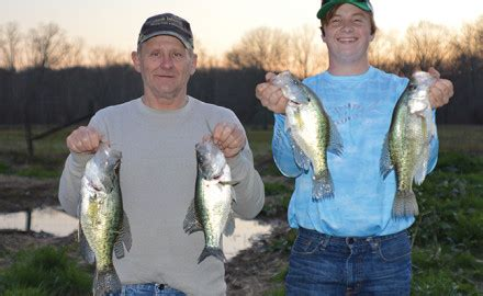 kentucky crappie forecast   game fish