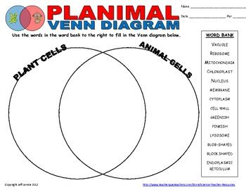 animal cell and plant cell venn diagram plant animal cell venn diagram by science resources tpt
