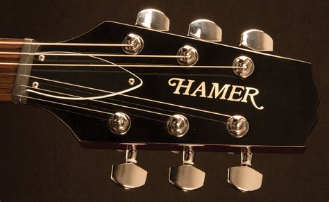 hamer archtop wiring diagram archtop readyjetset co