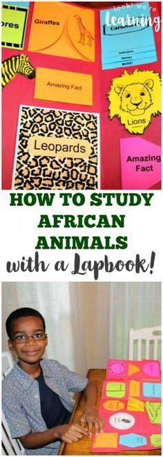 print    animal book  kids  color