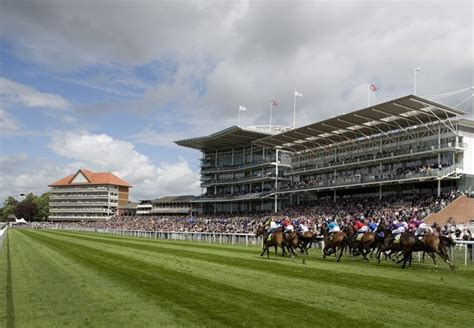 york racecourse 28 images york racecourse race meets