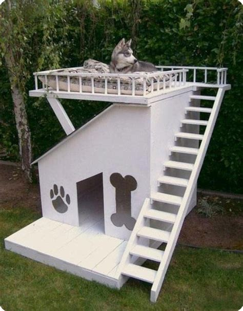 ultimate dog house the ultimate dog house with a deck page 1