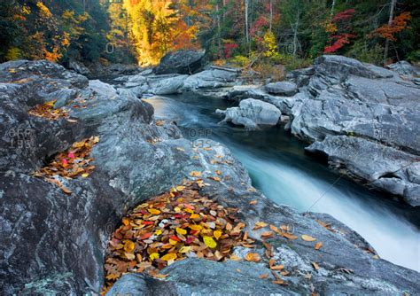 Best Color With Orange by Chattooga Stock Photos Offset