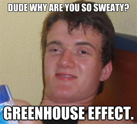 Meme Effect - dude why are you so sweaty greenhouse effect 10 guy