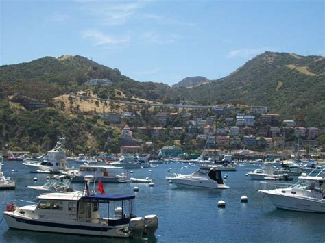 catalina island shore boats inside the mind of a highly sensitive person the boat to