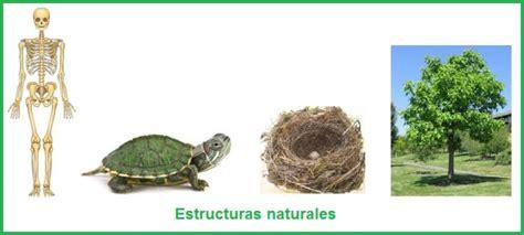 imagenes de estructuras naturales estructuras naturales