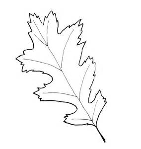 Oak Leaf Template by Oak Leaf Pattern Printable Www Imgkid The Image