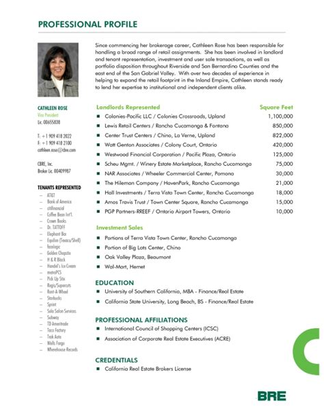 wonderful profile for resume exle contemporary resume