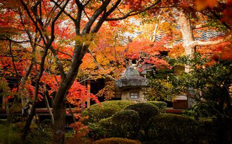 jeffrey friedls blog  gorgeous enkouji temple