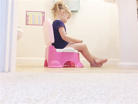 how to re potty your think you how to potty your toddler you re wrong state of mind