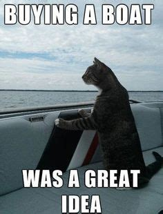 i should buy a boat this was a good decision i should buy a boat on pinterest funny cat pictures
