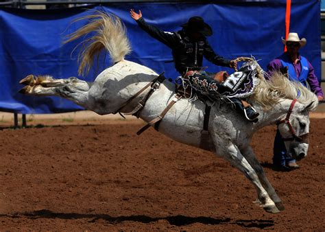 Rodeo Royalty stetson wright may be rodeo royalty to fans but bulls and