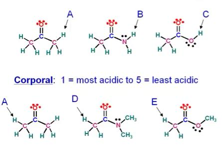 Acidic Protons by Solved Rank Protons From Most Acidic To Least Acidic Cor