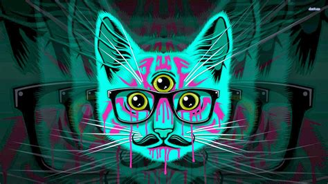 wallpaper cat 3d glasses new hipster cat wallpaper dodskypict