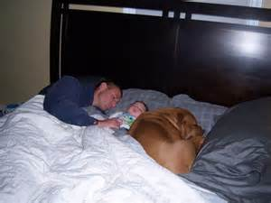 bed sharing with baby dad bed sharing and baby next to dog there is nothing