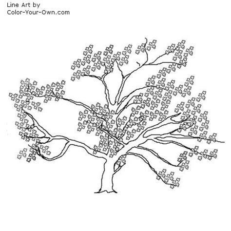 coloring page cherry tree inkspired musings cherry blossoms for spring