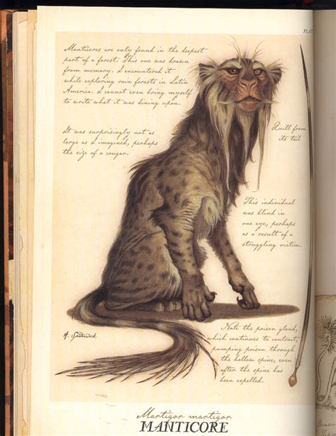 sight a celta novel manticore spiderwick chronicles wiki fandom powered by
