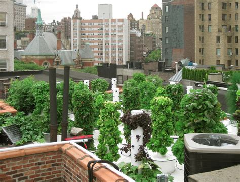Farm To Table Restaurants Nyc by 9 Rooftop Farms Gardens Bars And Restaurants To Savor