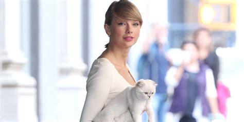 taylor swift cat advertisement taylor swift steps out with her pet cat olivia under her