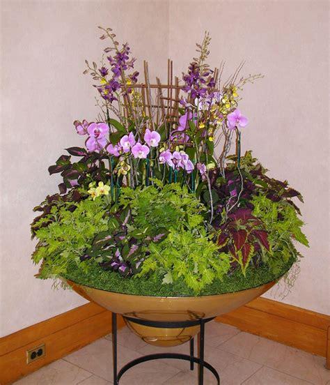 interior plant design maintenance gardeners guild