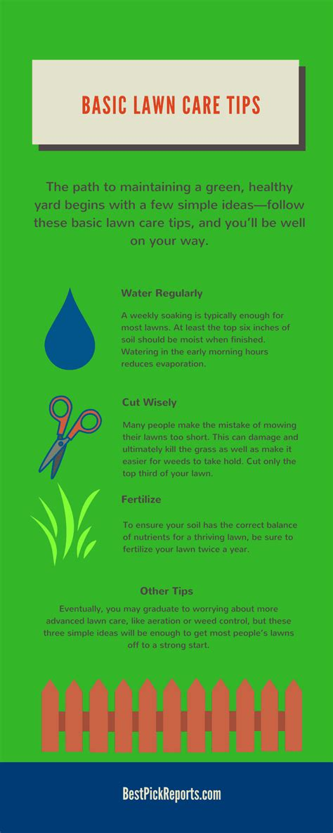Care Tips 3 by A Lush Green Lawn With These Tips Infographic